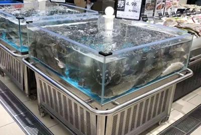 苏州超市鱼缸