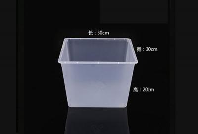 半透明食品盒